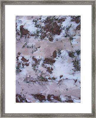 Reversing The Roles - Soil Dusting A Crispy Snow Framed Print