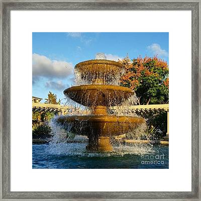 Revitalize  Framed Print