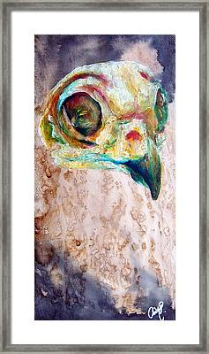 Revolution Burrowing Owl Framed Print
