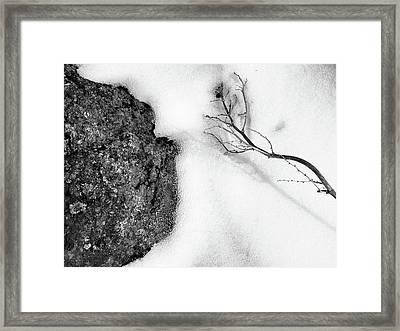Revolve Framed Print by Tom Druin