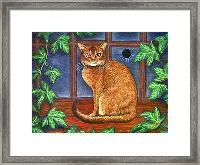Rex The Cat Framed Print by Linda Mears