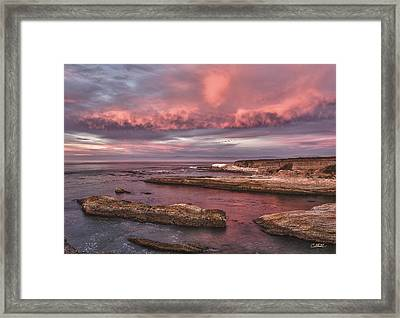 Rhapsody In Pink Framed Print