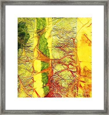 Rhapsody Of Colors 34 Framed Print