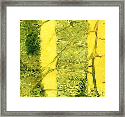 Rhapsody Of Colors 37 Framed Print
