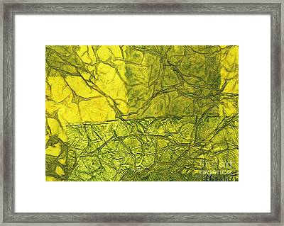 Rhapsody Of Colors 39 Framed Print