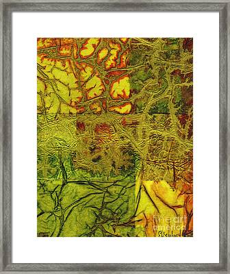 Rhapsody Of Colors 41 Framed Print