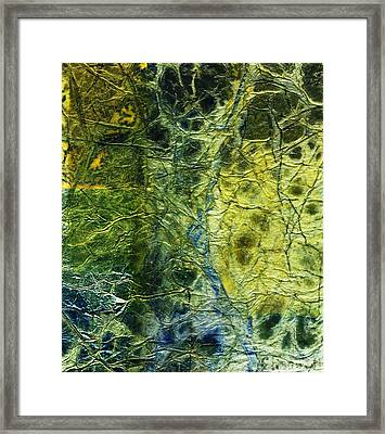 Rhapsody Of Colors 5 Framed Print by Elisabeth Witte - Printscapes