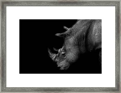 Rhino Framed Print by Martin Newman