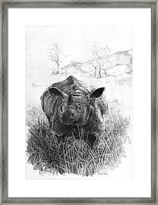 Rhino Framed Print by Paul Illian