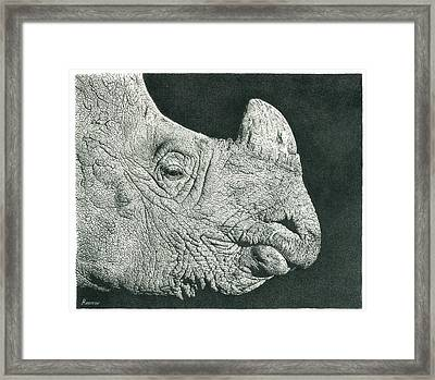 Rhino Pencil Drawing Framed Print
