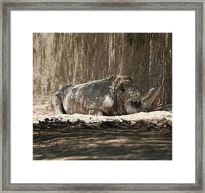 Framed Print featuring the digital art Rhino by Walter Chamberlain
