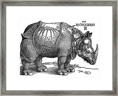 Rhinoceros 1515 Framed Print