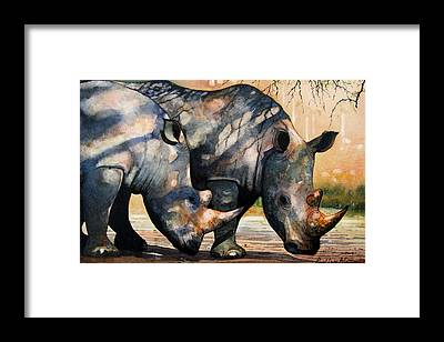 Rhino Framed Prints