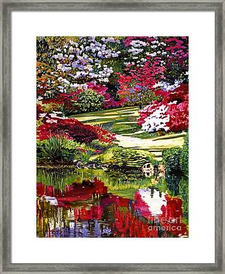 Rhodendron Reflections Framed Print by David Lloyd Glover