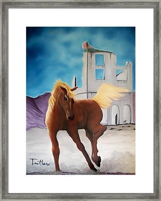 Rhyolite Pony Framed Print by Patrick Trotter