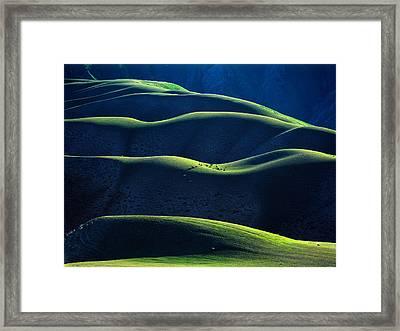 Rhythm Framed Print by Adam Chen
