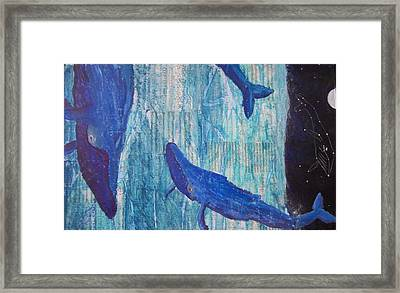 Rhythm And Blues Framed Print by Adam Davis