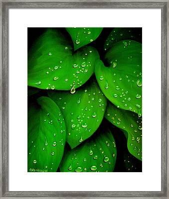 Rhythm Of The Rain Framed Print