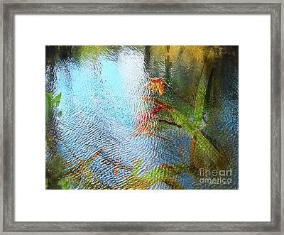 Riachuelo Framed Print by Alfonso Garcia