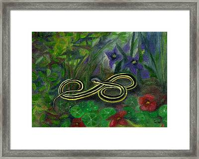 Ribbon Snake Framed Print