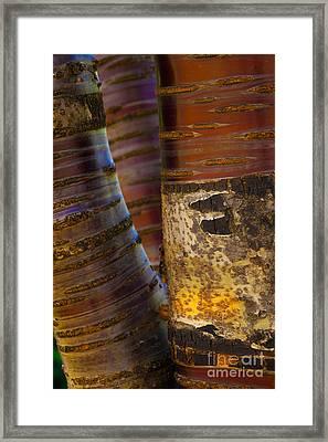 Ribbons Framed Print by Jennifer Apffel