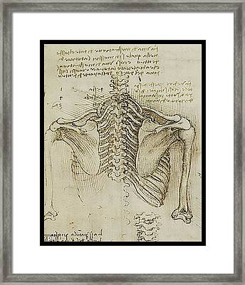 Framed Print featuring the painting Ribcage Main by James Christopher Hill