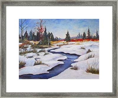Rice Lake Framed Print by Diane Daigle