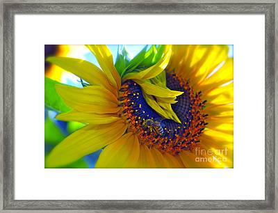 Rich In Pollen Framed Print
