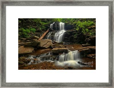 Ricketts Glen Shawnee Falls Cascades Framed Print