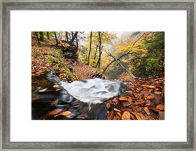 Ricketts Glen State Park Ganoga Falls Allegheny Mountains Pennsylvania Framed Print by Mark VanDyke
