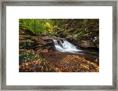 Ricketts Glen State Park Pennsylvania Autumn Waterfall Scenic Framed Print