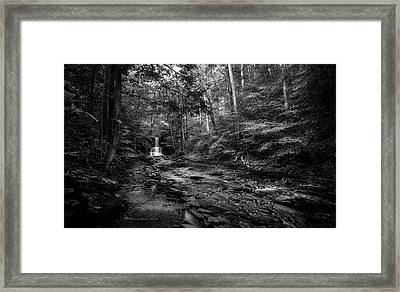 Ricketts Surprise Framed Print by Marvin Spates