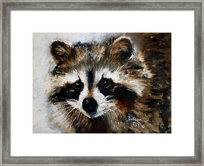 Rickey Raccoon Framed Print
