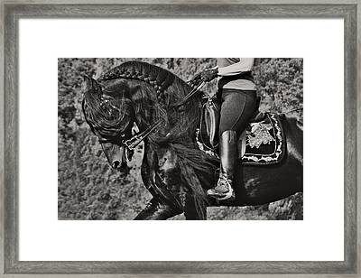 Rider And Steed Dance Framed Print by Wes and Dotty Weber
