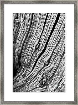 Framed Print featuring the photograph Ridges - Bw by Werner Padarin