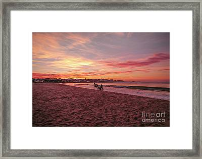 Riding Home Framed Print by Roy McPeak