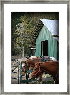 Framed Print featuring the digital art Riding Horses by Kim Henderson