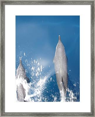 Riding The Bow Framed Print by Chad Natti