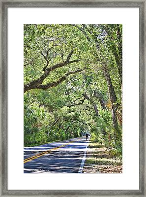 Riding The Ormond Loop Framed Print