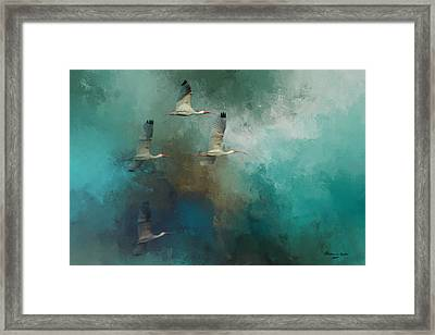 Riding The Winds Framed Print