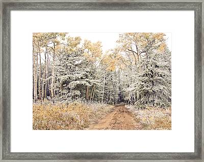 Right Place Right Time Framed Print by James Steele