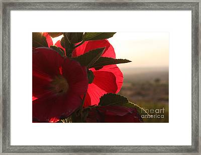 Right Turn On Red Framed Print