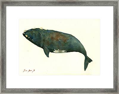 Right Whale Painting Framed Print by Juan  Bosco