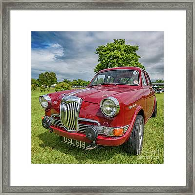 Riley 1.5 Framed Print by Adrian Evans
