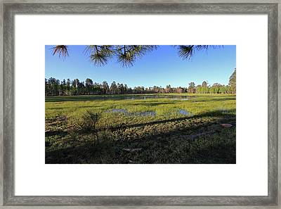 Rim Glade Framed Print by Gary Kaylor