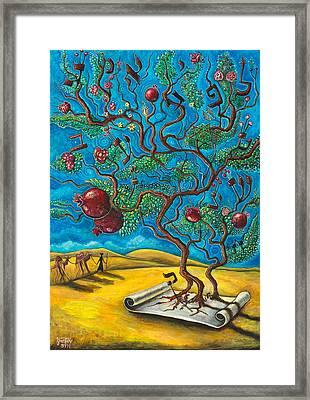 Rimon Ben Torah Framed Print