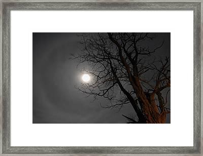 Ring Around Moon Framed Print by Alan Lenk