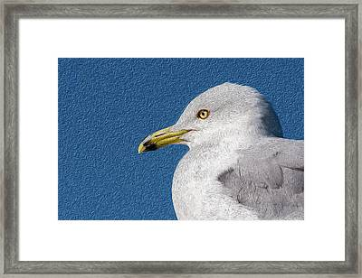 Framed Print featuring the mixed media Ring-billed Gull Oil Portrait by Onyonet  Photo Studios