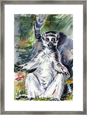 Ring-tailed Lemur Framed Print by Kovacs Anna Brigitta