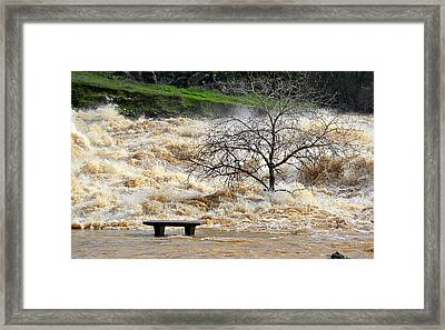 Framed Print featuring the photograph Ringside Seat by AJ Schibig